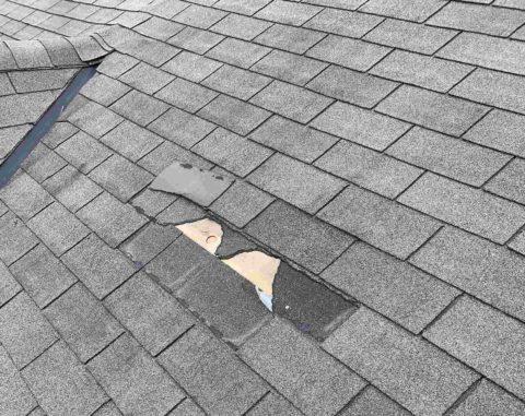 Repairing Roof Service